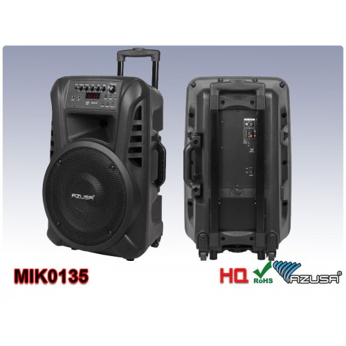 Active speaker (2 wireless microphones, SD card reader, Bluetooth, USB) 12""