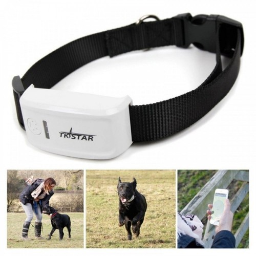 tkstar gps dog pet collar key chain gps tracker TK909 GPS +GPRS+AGPS