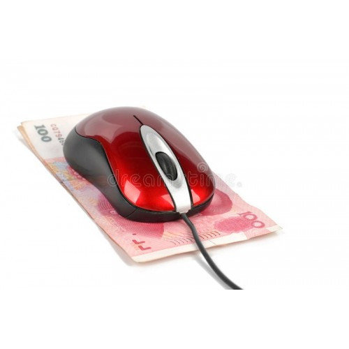 2.4G Wireless Entry Level Mouse
